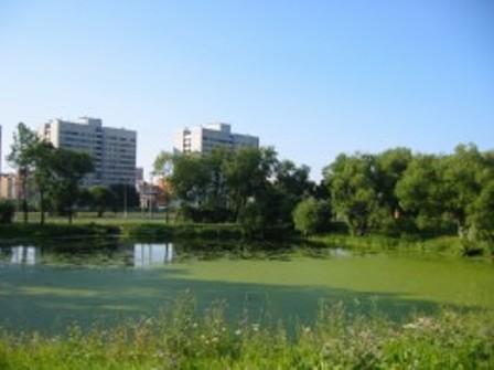 Стачек 111 (СПбГМТУ) - вид из парка